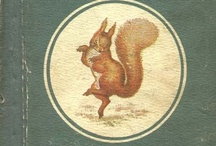 Squirrel Love (Chipmunks Too!) / by Beryl Weidenbach
