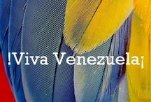 I Am Venezuela! / by NieCat Life Coaching for a Better You!