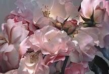 Floral Design / by MADGAL design