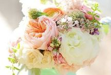 Bliss / Everything Wedding and Bridal / by Laura