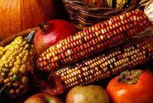 Celebrating Thanksgiving  2 / by Kristin Vargas-Nielsen