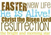 Holidaze: Easter / by Steelers Sage