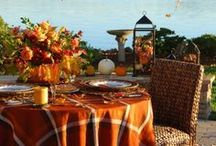 Fall & Thanksgiving Ideas / by Dana Stiles