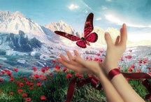 Butterfly Kisses / by Shannon Neil