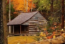 My Cabin in the Woods / by Sally Sheehan