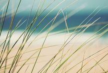 Shades Of Summer / Teintes de l'été / by Reitmans