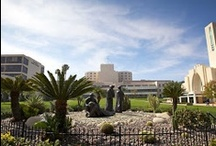 Loma Linda University / The who's who and what's to know about LLU / by Loma Linda University Health