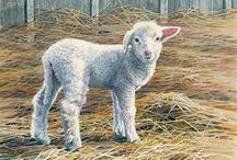 pinturas animales / by Maria Teresa Ramirez Hald