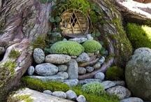 Fairy Gardens / by Raven Hawk