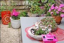 Container Gardening / Container Gardening. Gardening.  / by Darcel {The Mahogany Way}