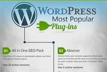 WordPress / As one of the world's top blogging and web building platforms WordPress has a plethora of capabilities. Take a look at stats, helps, and uses of WordPress.  / by Bluehost - Web Hosting