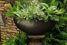 decor & gardening / by Alice Mays