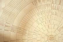 Genealogy / by Kelly Petrachkoff