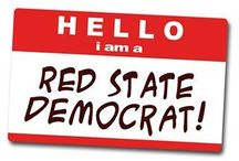 Politics : Voting Blue In A Red State / My political ideology and beliefs. / by Judd Hayes