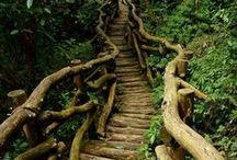 Home - Stairs / by Gralyne Watkins