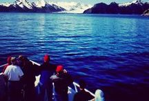 Alaska / Alaska`s majestic mountain peaks, green temperate forests and nearly 34,000 miles of protected coastal waters contain breathtaking scenery and biological wonders that reveal themselves to visitors traveling with Holbrook`s Alaska expeditions. It is a unique and fascinating destination for those wishing to encounter the last frontier.  / by Holbrook Travel