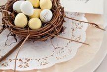 Easter Ideas / by Coco & Ella Designs