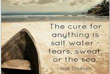 Salt Life / by Danielle LaFernier