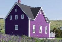 Purple me Happy! / by Tracy Jilbert : Phlox Dragon Designs