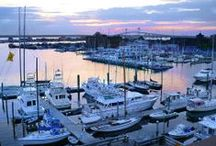 Welcome Aboard / The Newport's Marina / by The Newport Harbor Hotel and Marina