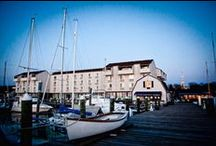 Explore The Newport / The Newport's Media Gallery / by The Newport Harbor Hotel and Marina
