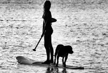 Paddle board / by Brenda Bower