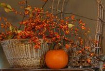 Fall Inspirations / by Nancy Faselt