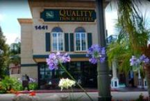 Anaheim Quality Inn / by Anaheim Quality Inn & Suites