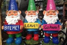 My ❥ For Gnomes... / Everything Gnomes...So Darn Cute.. / by Tammy ♡