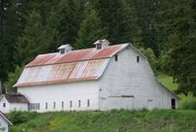 old white barn / by C Rayemann