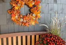 DIY Wreath Ideas / Give your front door major style this season with a beautiful (and one-of-a-kind) wreath. #DIY #FallDecor http://wayfair.ly/1gki4PZ / by Wayfair.com