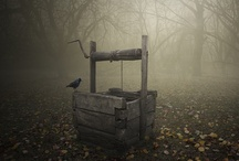 Lost in the Fog / by Geisterportal