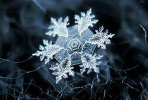 Copos de nieve / by Rosa Silvia