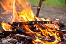 Bonfires/ Camping.  / by Wendy Santiago