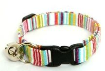 Cat Collars / Cool Cat Collars for the most stylish of cats. / by Pet Sitters Ireland