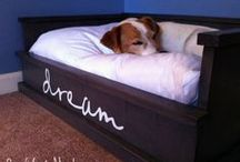 Cool Dog Beds & Kennels / Every dog needs a stylish dog house or dog kennel to lay their head! The most fun dog beds around. / by Pet Sitters Ireland