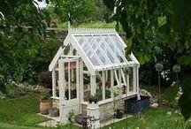 Garden ideas I like. / by Jenette Clay
