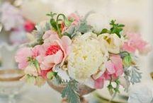 Cute Wedding / by Anaïs Lassalle Saint jean