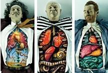 Cabinet of Curiosities / by Nikki Spiers