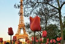 J'adore Paris / by Colleen Lopez