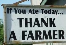 I Love Farms, Farmhouses and Farmer's Markets! / Support your local farmers.....No farms No food..... / by Lori Lope