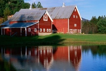 Barns / Barns capture the beauty of the country and always have some sort of hidden treasure inside. Love them.  / by Lori Lope