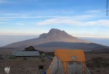 Kilimanjaro Grand Traverse Approach / Journey off the beaten path along the northern circuit, nearly circumventing the mountain. See a side of Kili few trekkers get to see, and enjoy two daytime summit bids. This trek truly defines taking the road less traveled and will bring out your spirit of adventure. Embark on a journey through volcanic towers, vertical ice walls, and vast badlands before taking it all in from the top of Africa's highest peak. / by Thomson Treks