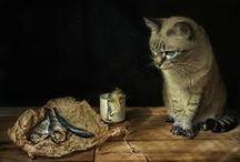 Still Life / Still Life & Food Photography / by Arina Jansen van Vuuren