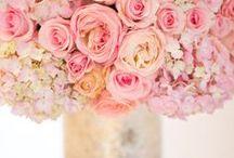 Flowers <3 / by Amna A. Althani