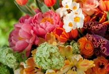 Flower arrangements / by Blair Belin