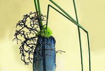 Ikebana / by Lisa Salinas