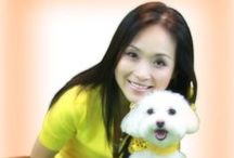 My Dog Sophie (maltese) / Sophie is my 5 year-old maltese girl. She is the sweetest thing in the world. / by Simply Lanna