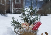 dreaming of christmas... / by Denise Lachinski