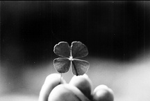 when Irish eyes are smiling / by Jessica